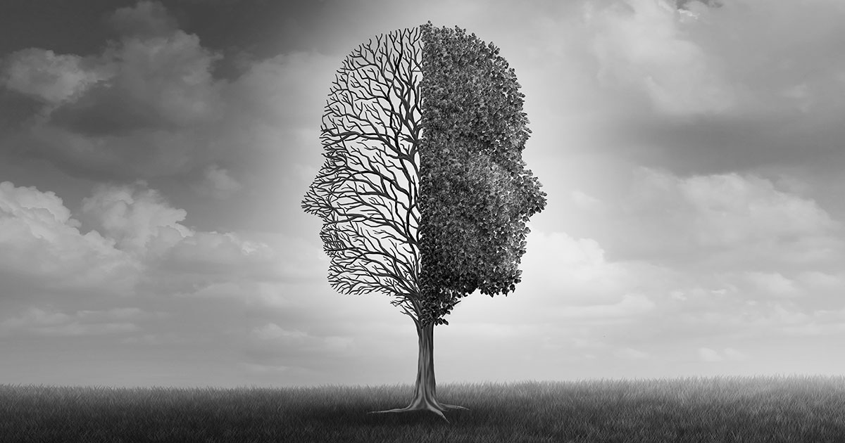 what are the branches of psychology